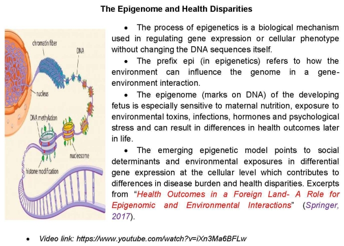 The Epigenome and Health Disparities
