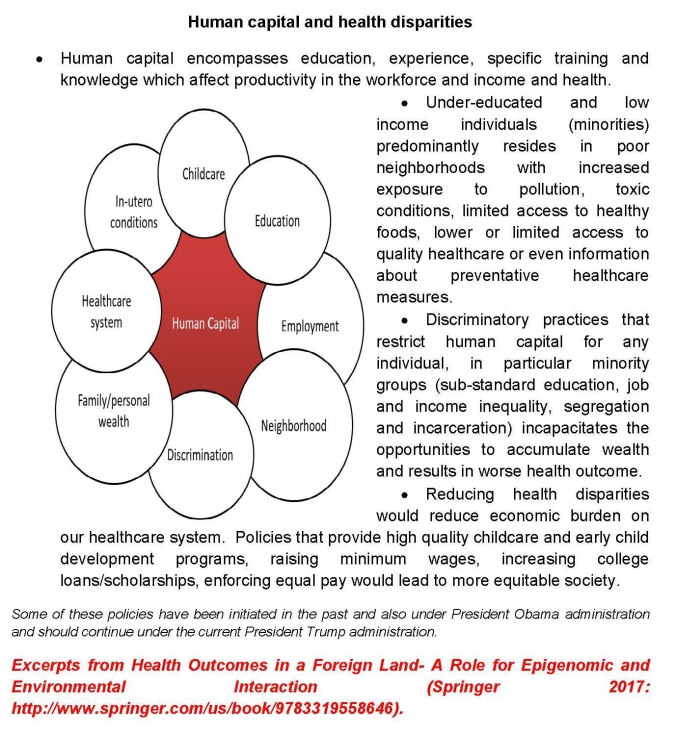 Human capital and health disparities